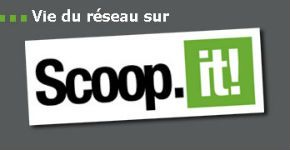 scoop it reseau 1